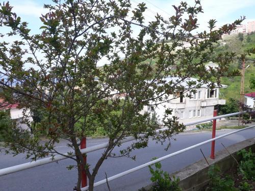Trabzon Akcaabat Village House telefon