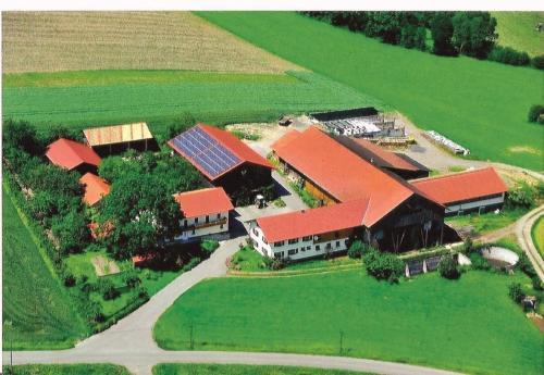 Birkenhof - Apartment - Neukirchen beim Heiligen Blut