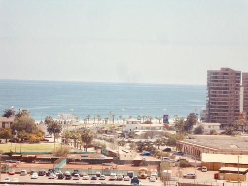 Hotelcondominio parque las palmas