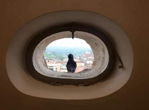 __{offers.Best_flights}__ La Casa nel Borgo Antico