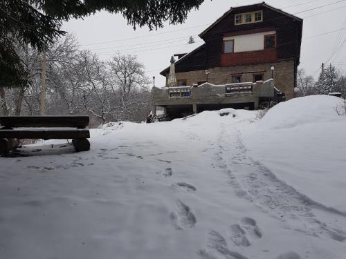 Selimica