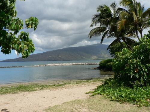 Kihei Bay Surf #119 Condo - Kihei, HI 96753