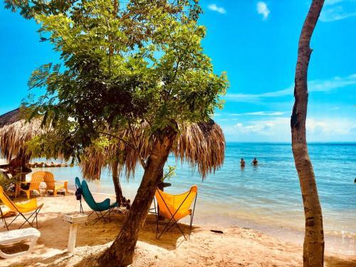 . Isla Luna Beach Barú