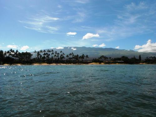 Waiohuli Beach Hale #d-221 Condo - Kihei, HI 96753
