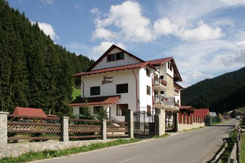Pensiunea La Turcu - Accommodation - Moieciu de Sus