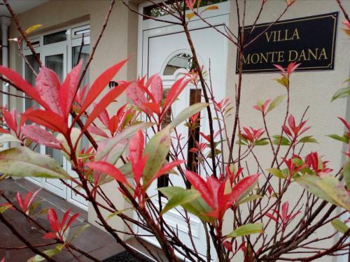 . Villa Monte Dana