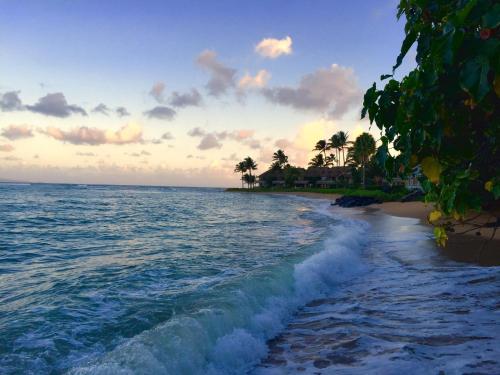 Kahana Reef 422 - Lahaina, HI 96761