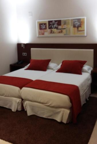 Habitación Doble - 2 camas Hotel Don Felipe 20