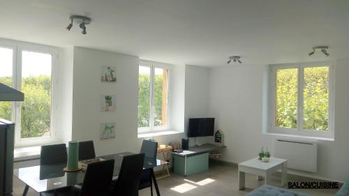 LES CACTUS - Apartment - Saint-Étienne