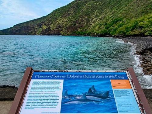 Kealakekua Hale - Captain Cook, HI 96704