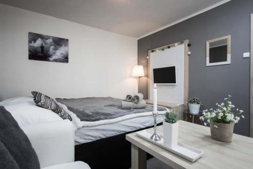Hotel-overnachting met je hond in STING Apartments Havířov - Havířov