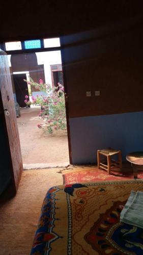 Camping Les Palmeraies Tagounite Morocco