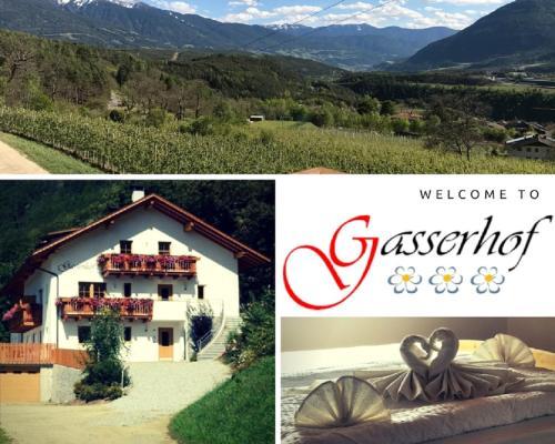 . Gasserhof Aicha