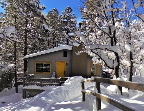 LOCATION! Nature Lovers Getaway - Close to Historic Downtown - Flagstaff