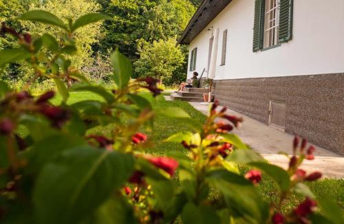 . Ferienhaus Vogeljager