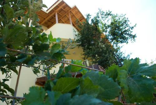 Avsa Adasi Avşa Suna Hotel rezervasyon