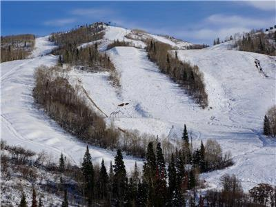 Storm Meadows Club C 411 - Steamboat Springs, CO 80487