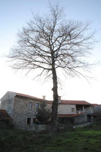 Casa de Penedones, Montalegre