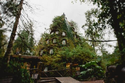 Huilo Huilo Montaña Mágica Lodge room photos