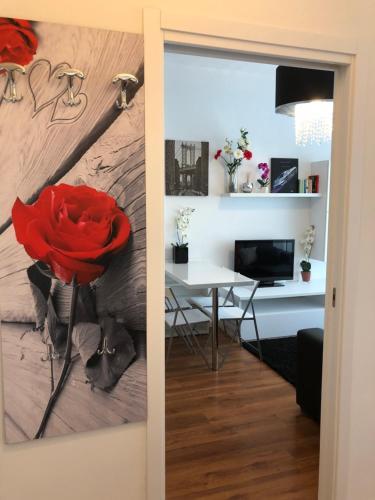 Affitti Abano - Rent Abano - Apartment - Abano Terme