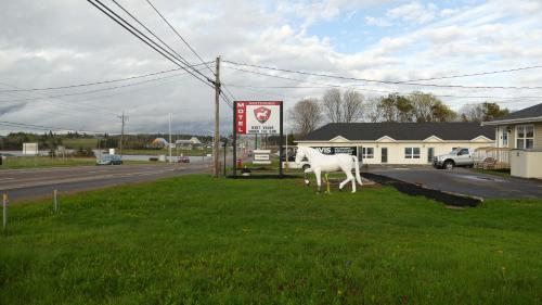 The White Horse Motel - Photo 8 of 32