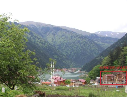 Uzungol Gosgor Apart rooms