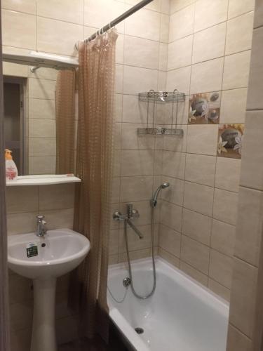 . Apartment on Oktyabrskaya 261
