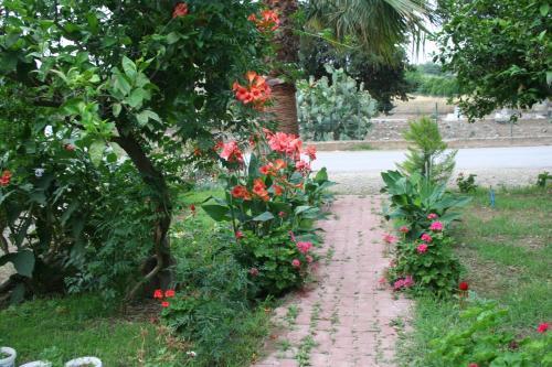 Cıralı Naz Apartlari Cirali online rezervasyon