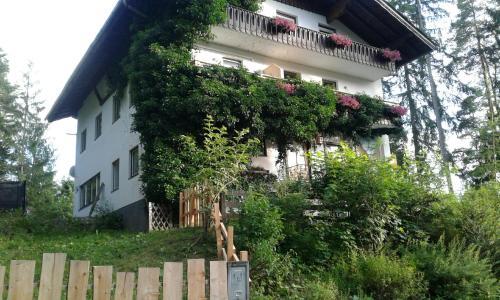 Pension Adlerhorst - Accommodation - Ramsau am Dachstein