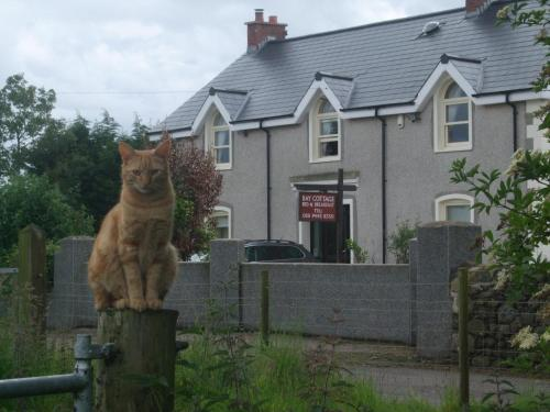Bay Cottage Bed & Breakfast, County Antrim