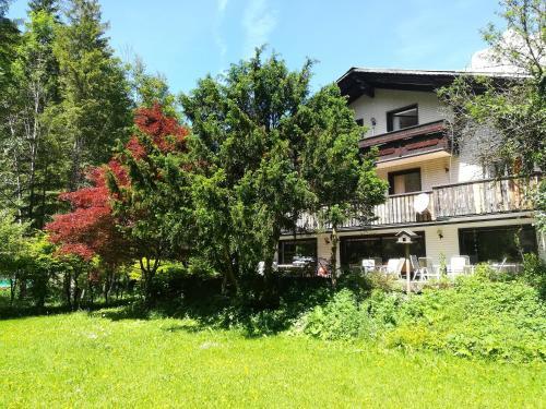 The Treehouse Backpacker Hostel, Pension in Grünau im Almtal bei Kirchdorf an der Krems