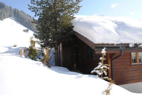 Apartment Nadeschda - Chalet - Adelboden