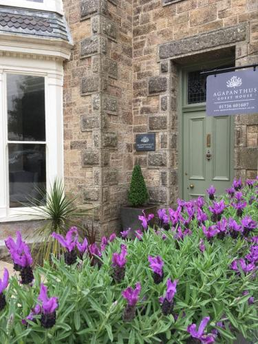 Agapanthus Guest House, Penzance, Cornwall