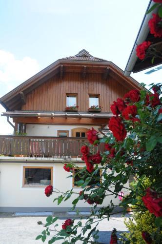 Gästehaus Brugger - Apartment - Nassfeld Hermagor