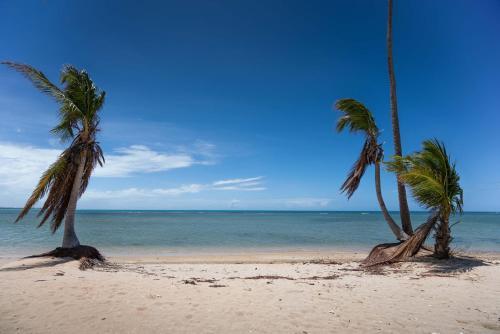 Coco Beach Resort In Pr