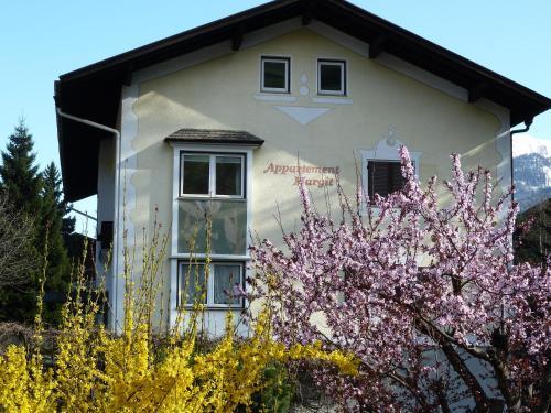 . Appartements Margit