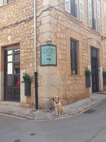 Carrer de Reial 15, Sóller, 07100, Majorca.
