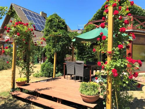 . Dom Pod Różą Wiatrów Lubin near Międzyzdroje Miedzyzdroje Misdroy, cisza, spokój, ruhig, peaceful, beautiful view