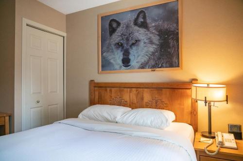 Banff Rocky Mountain Resort - Banff, AB T1L 1A2