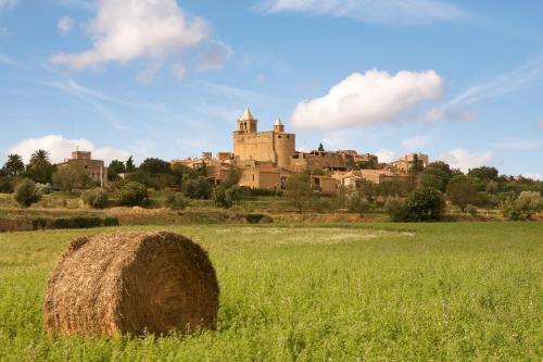 Carrer de Sant Esteve, 15-17, 17462 Madremanya, Girona, Spain.