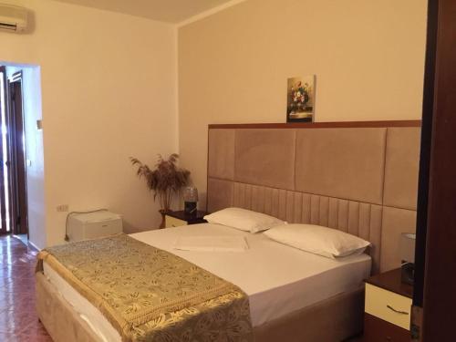 Фото отеля Hotel Pishat e Buta