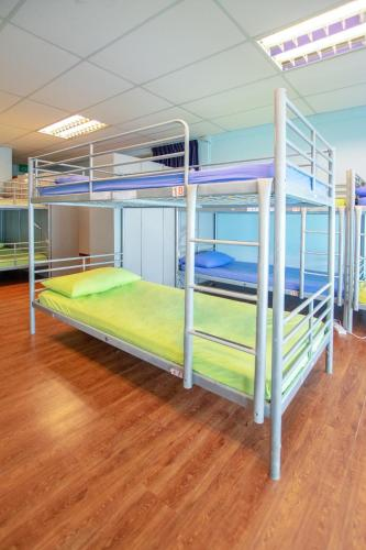 Single Bed in 18-Bed Mixed Dormitory Room