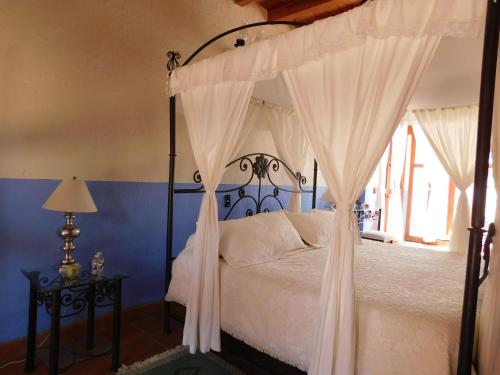 Hotel Casa Erizo 39 (Adult Only) 1