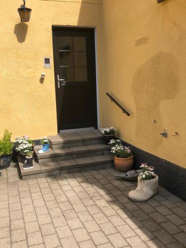 Oasen, Ferienwohnung in Skagen