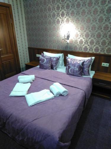 Hotel Mini-Hotel Aska