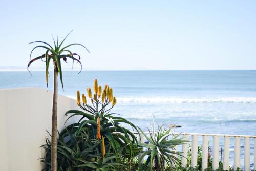 . Chichi's Beach Apartment