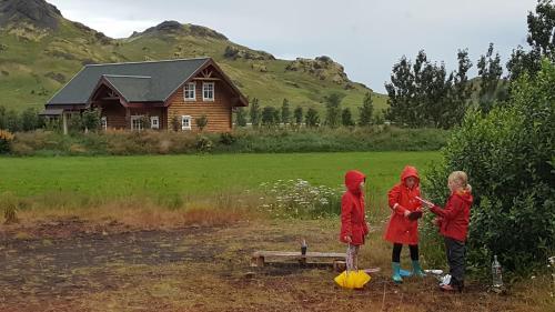 Viking Villa - Holiday Rental - Photo 4 of 39