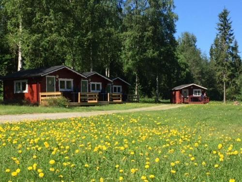 Hammarstrand Escort - Svensk Sexdating - Sverige Real Escort