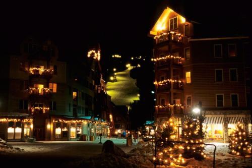 Timber Ridge #122 - Wildernest - Silverthorne, CO 80498