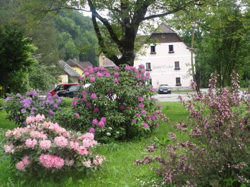 Gasthof Eschau - Hotel - Palfau